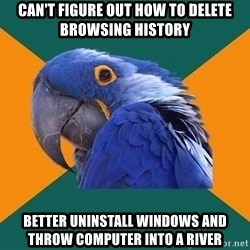Paranoid Parrot - can't figure out how to delete browsing history Better uninstall windows and Throw computer into a river