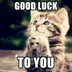 good luck cat - Good luck to you