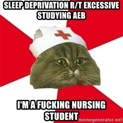 Nursing Student Cat - Sleep Deprivation R/t Excessive studying aeb I'm a fucking nursing student