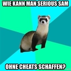 Obvious Question Ferret - wie kann man serious sam  ohne cheats schaffen?