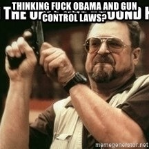 am-i-the-only-one - thinking fuck obama and gun control laws?
