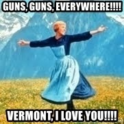 Look at all these - GUNS, GUNS, EVERYWHERE!!!! VERMONT, I LOVE YOU!!!!