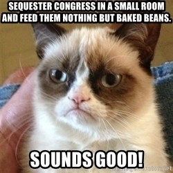 Grumpy Cat  - Sequester congress in a small room and feed them nothing but baked beans. Sounds Good!