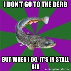 Judgemental Catfish - I DON'T GO TO THE DERB bUT WHEN i DO, IT'S IN STALL SIX