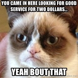 Angry Cat Meme - you came in here looking for good service for two dollars... yeah bout that