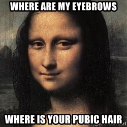 the mona lisa  - where are my eyebrows where is your pubic hair