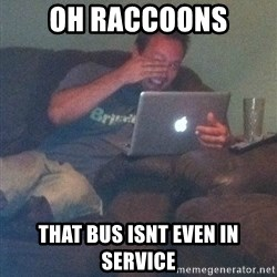 Meme Dad - oh raccoons that bus isnt even in service