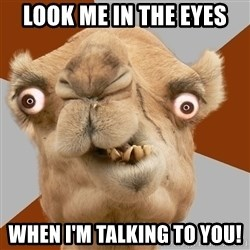 Crazy Camel lol - look me in the eyes when i'm talking to you!