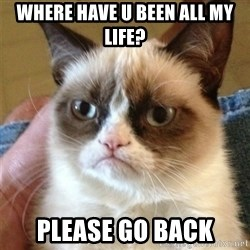 Grumpy Cat  - where have u been all my life? please go back