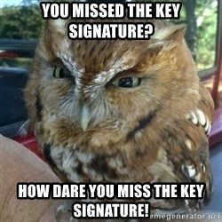 Overly Angry Owl - You missed the key signature? HOw dare you miss the key signature!