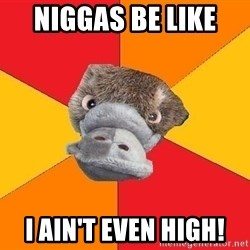 Psychology Student Platypus - NIGGAS BE LIKE  I AIN'T EVEN HIGH!