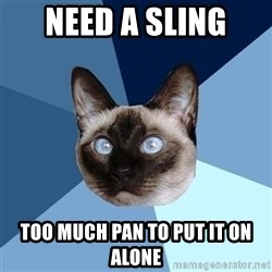Chronic Illness Cat - need a sling too much pan to put it on alone