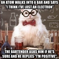 """Chemistry Cat - an atom walks into a bar and says """"i think i've lost an electron"""" the bartender asks him if he's sure and he replies """"I'm positive"""""""