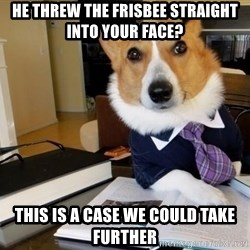 Dog Lawyer - he threw the frisbee straight into your face? this is a case we could take further