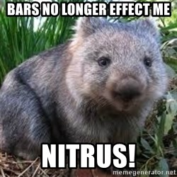 wombat - bars no longer effect me NITRUS!