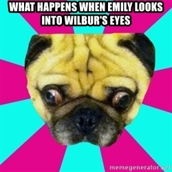 Perplexed Pug - WHAT HAPPENS WHEN EMILY LOOKS INTO WILBUR'S EYES