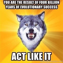 Courage Wolf - You Are the result of four billion years of evolutionary success act like it
