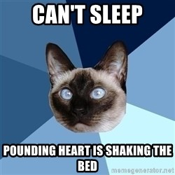 Chronic Illness Cat - Can't sleep pounding heart is shaking the bed