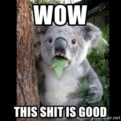 Koala can't believe it - wow this shit is good