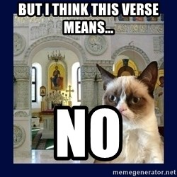 Grumpy Orthodox Cat - but i think this verse means... no