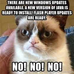 Grumpy Cat  - There are new windows updates available. A new version of Java is ready to install! flash player updates are ready. NO!  NO!  NO!