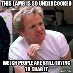 Gordon Ramsay - This lamb is so undercooked welsh people are still trying to shag it