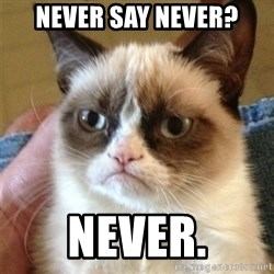 Grumpy Cat  - never say never? never.