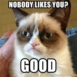 mean cat - Nobody likes you? Good
