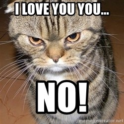 angry cat 2 - i love you you... no!