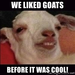 10 goat - We liked goats before it was cool!