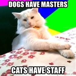 Villain Cat - dogs have masters cats have staff