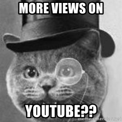 Monocle Cat - more views on youtube??