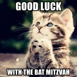 good luck cat - Good Luck WITH THE BAT MITZVAH