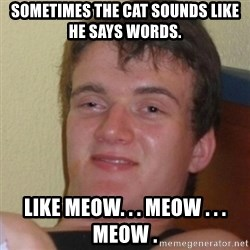 Stoner Stanley - sometimes the cat sounds like he says words. like meow. . . meow . . . meow .