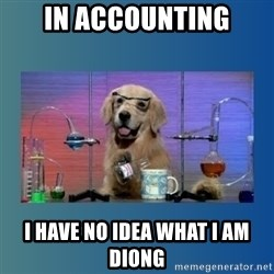 Chemistry Dog - in accounting i have no idea what i am diong