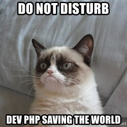 Grumpy cat 5 - do not disturb DEV PHP SAVING THE WORLD