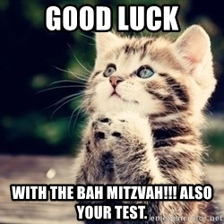 good luck cat - GOOD LUCK WITH THE BAH MITZVAH!!! ALSO YOUR TEST.