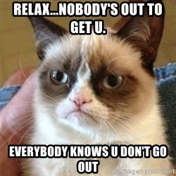 Grumpy Cat  - relax...nobody's out to get u. everybody knows u don't go out