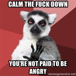 Chill Out Lemur - Calm the fuck down you're not paid to be angry