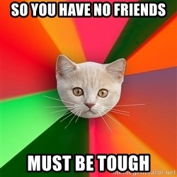 Advice Cat - so you have no friends must be tough