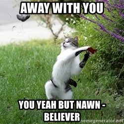 GTFO - aWAY WITH YOU yOU yEAH BUT NAWN -BELIEVER