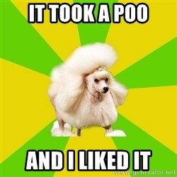 Pretentious Theatre Kid Poodle - it took a poo and i liked it