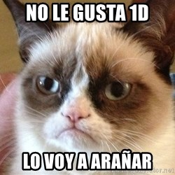 Angry Cat Meme - no le gusta 1D lo voy a arañar