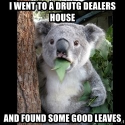 Koala can't believe it - i went to a drutg dealers house  and found some good leaves