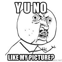 Y U SO - Y U NO LIKE MY PICTURE?