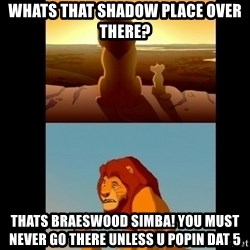 Lion King Shadowy Place - whats that shadow place over there? thats braeswood simba! You must never go there unless u popin dat 5
