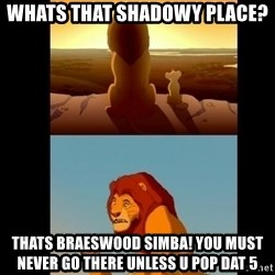 Lion King Shadowy Place - whats that shadowy place? Thats braeswood simba! you must never go there unless u pop dat 5