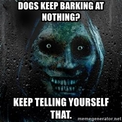 Uninvited house guest - Dogs keep barking at nothing? Keep telling yourself that.
