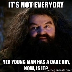 Yer A Wizard Harry Hagrid - It's not everyday  YER YOUNG MAN HAS A CAKE DAY, NOW, IS IT?