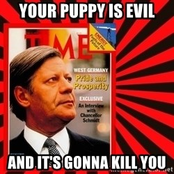Helmut looking at top right image corner. - YOUR PUPPY IS EVIL AND IT'S GONNA KILL YOU